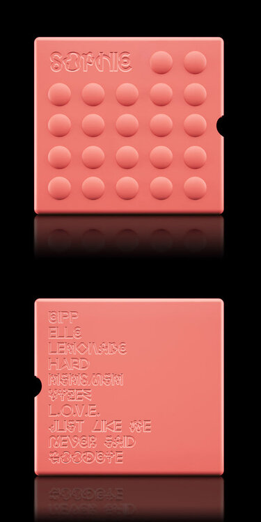 SOPHIE-SILICON-BUBBLE-CASE-PINK-BOTH_102